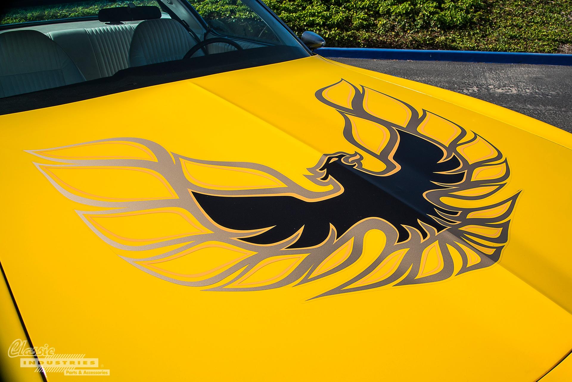 Firebird 3.jpg