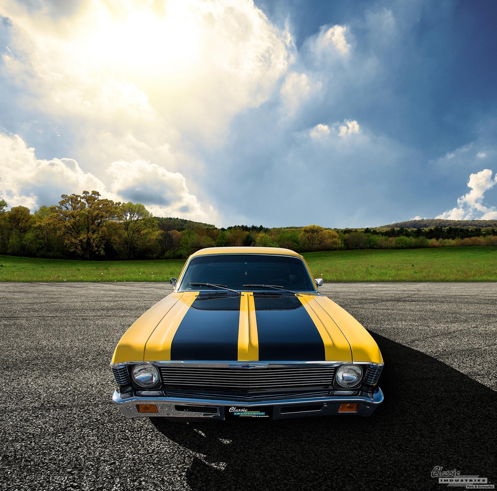 Yellow Nova Field.jpg