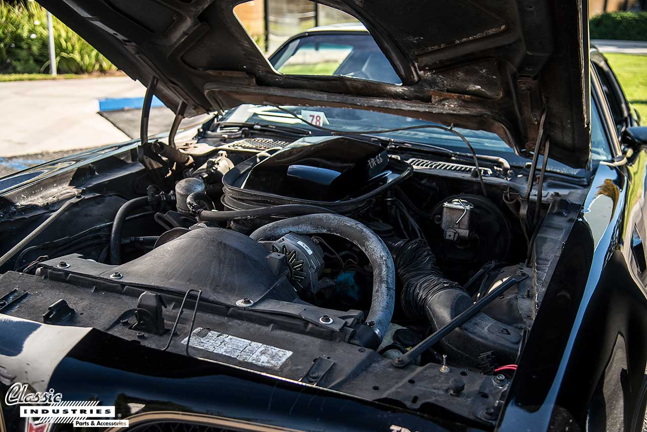 78-Trans-AM-Engine