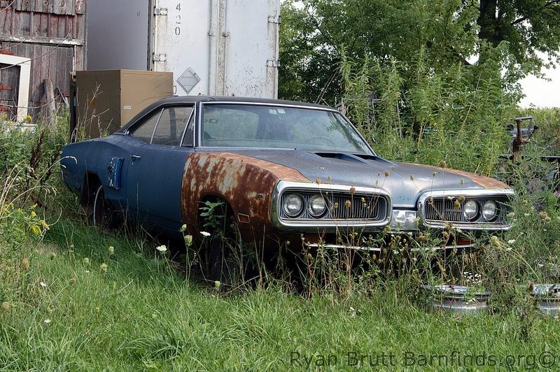 Photo courtesy of carsinbarns.blogspot.com