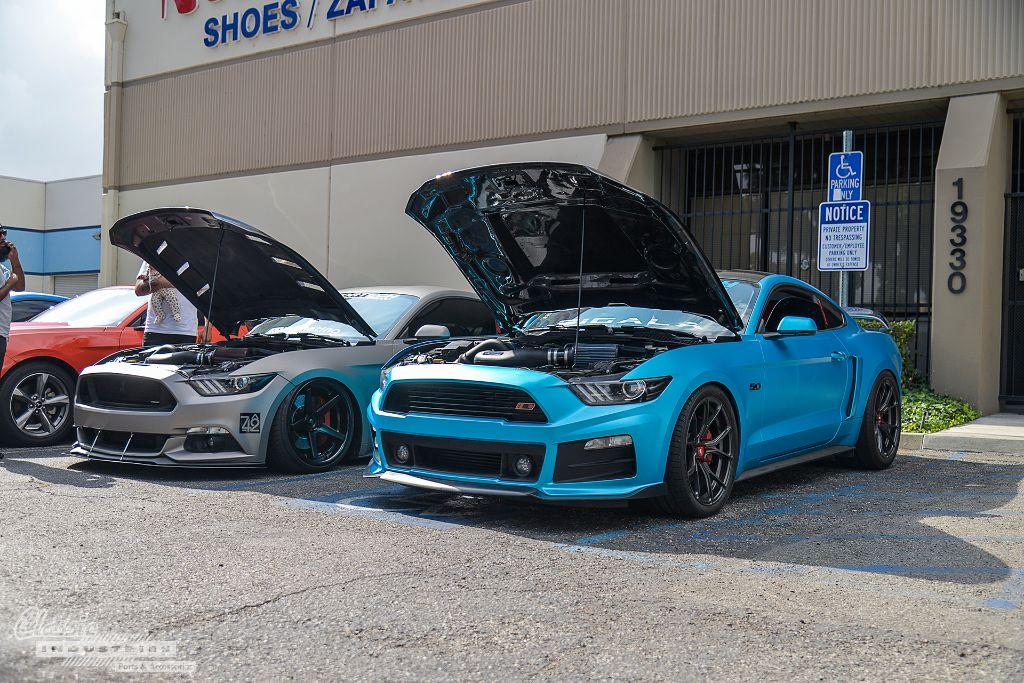 Fifth Mustang Meet Up  2